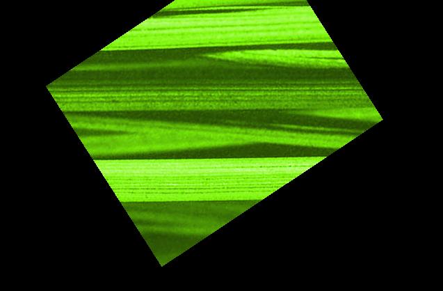 vibers-logo-05